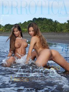 Adarce